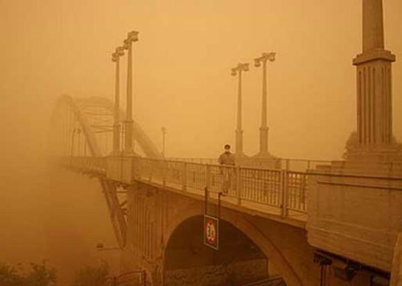 مالچ طبیعی MNF مشکل ریزگرد خوزستان را حل می کند