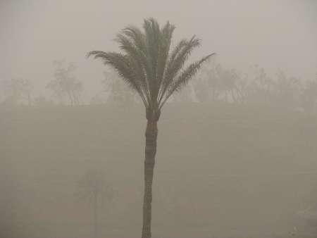توفان شن و ریزگردها شهرستان ریگان را فرا گرفت