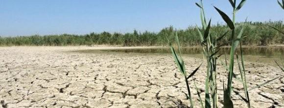 خشکی تالاب هورالعظیم و تشدید ریزگردها در پی سدسازیهای غیرکارشناسانه