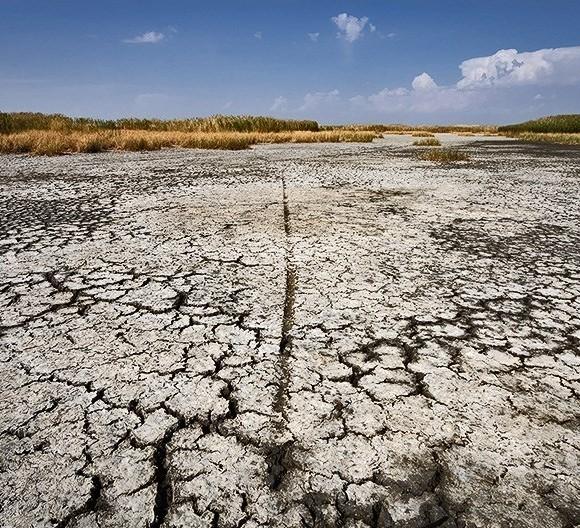 بحران آب و ریزگردها نتیجه رفتار غلط ما در قبال محیط زیست است