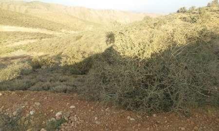 غرش ماشین های معدنکاران در روستاهای گردشگری قلات و کودیان شیراز