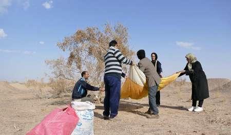 جلب مشارکت مردم ضرورت کاهش تبعات ریزگردها در گناباد