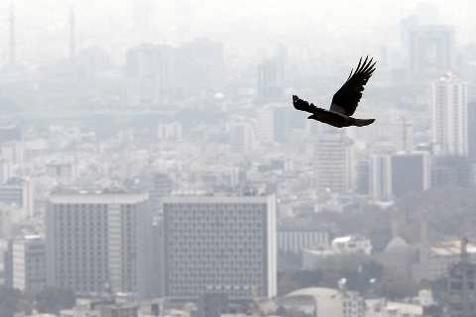 تعطیلی مدارس راهکار کاهش آلودگی هوای تهران نیست