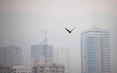 وارونگی دما عامل اصلی آلودگی هوای تهران در روزهای اخیر