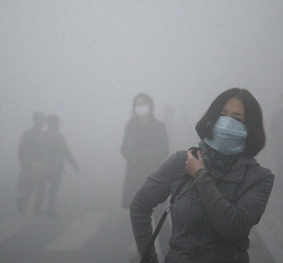 تدبیر موفق چین برای مقابله با ریزگردها
