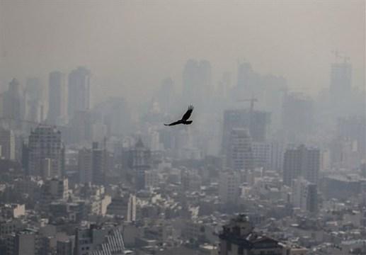 راهکار نماینده مجلس برای کاهش آلودگی هوای تهران